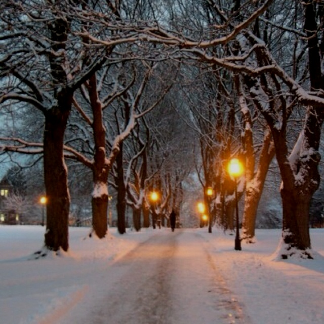 Куда можно сходить в Москве зимой: идеи